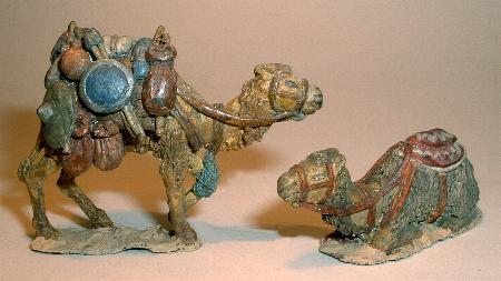 Pack camel (C54) and kneeling camel (C56)